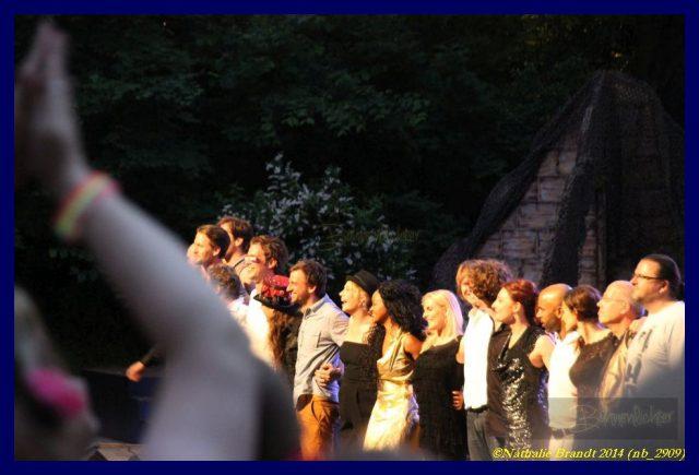 IMG_6047-c-Nathalie-Brandt-musical-mmets-pop-2014