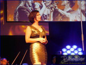 DSCN1056-Musical-meets-rock-2017-(c)-Marion-Hohenecker