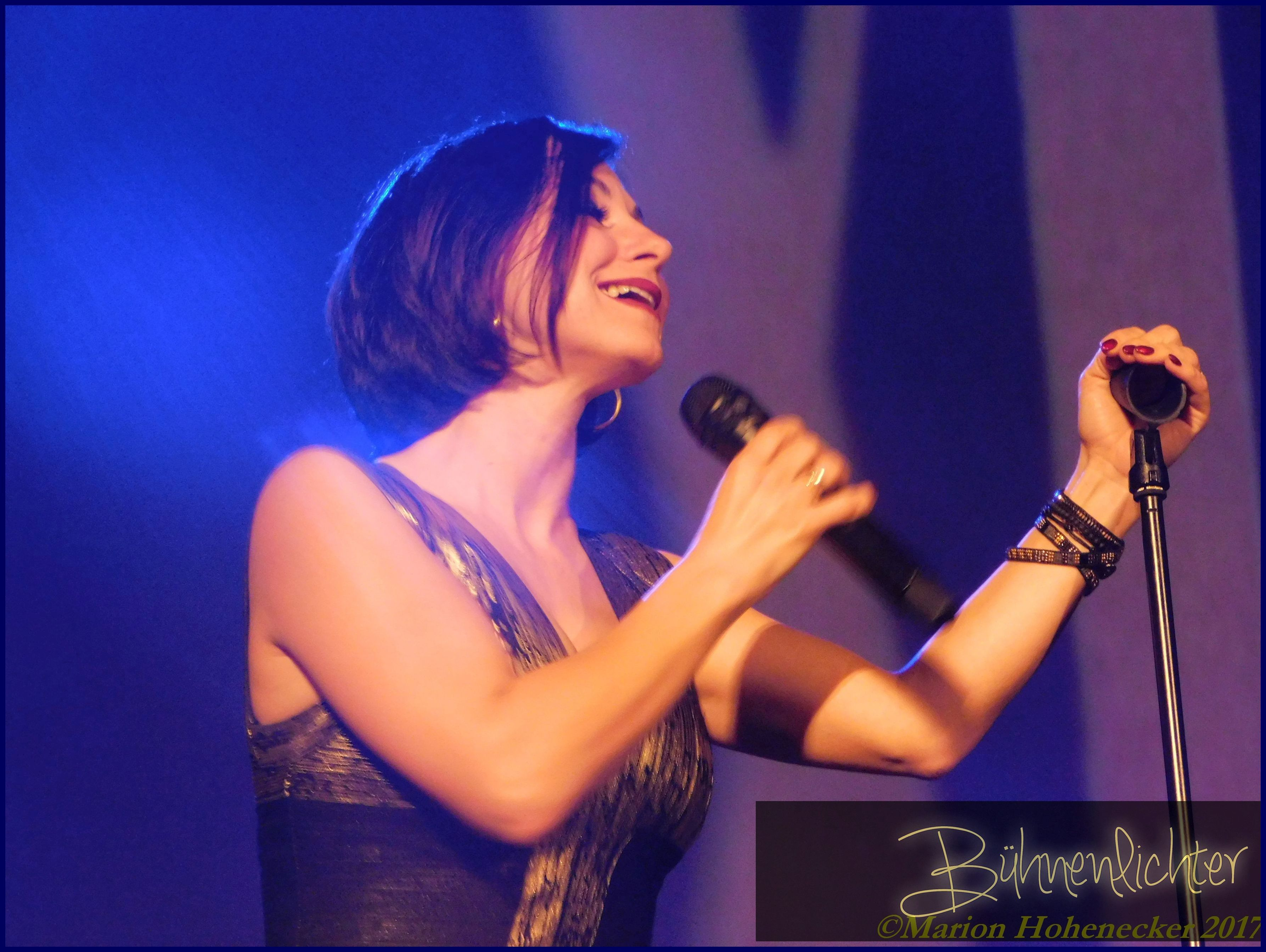 DSCN1064-Musical-meets-rock-2017-(c)-Marion-Hohenecker