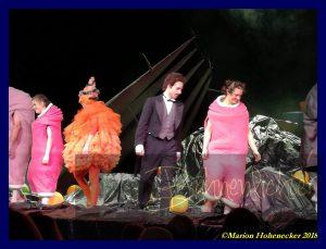(C) Marion Hohenecker 2018 Die kleine Hexe Landestheater Niederösterreich (5)