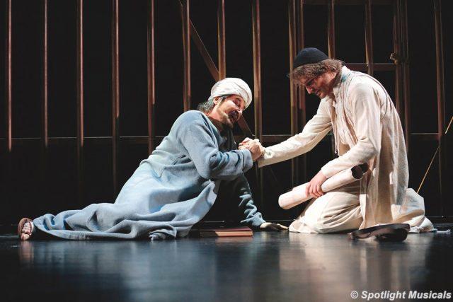 Medicus Ibn Sina